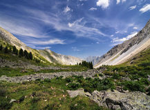 Stone run in an alpine meadow Stock Image