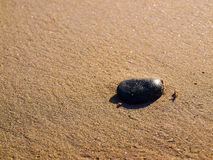 Stone on sand. A shot of a black stone on sand Stock Photography