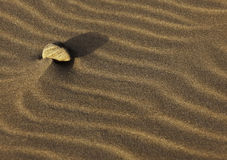Stone on sand. A stone laying on sand in the desert Stock Images