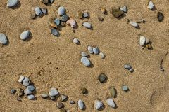 Stones on the sand. The stone in the sand which is located on the beach near the sea Stock Photos