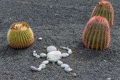 Stone sculpture and cactus Royalty Free Stock Image