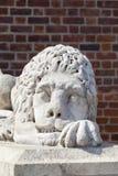 Stone sculpture of a lion, Town Hall Tower, Krakow, Poland Stock Photos