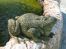 Stone sculpture of a toad. The sculpture is a large green frog on the stone curb of the fountain Royalty Free Stock Photos