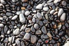 Stone on sea shore closeup Royalty Free Stock Image