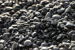 Stone on sea shore closeup Royalty Free Stock Image