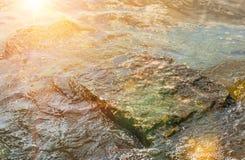 Stone in sea water Stock Image