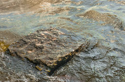 Stone in sea water Stock Photography