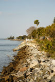 SeaWall Toward Walkways and Palm Tree Royalty Free Stock Image
