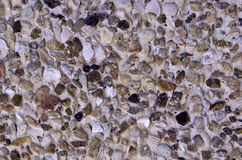 Stone and shell wall texture Royalty Free Stock Photos