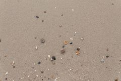 Stone,Shells in the sand on the beach in the summer royalty free stock image