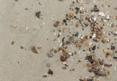 Stone,Shells in the sand on the beach in the summer royalty free stock photography