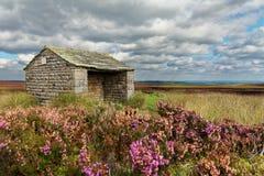 Stone shelter Stock Photo