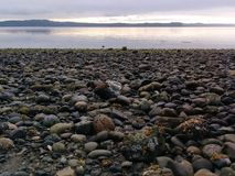 Stone shoreline with morning light Stock Photography