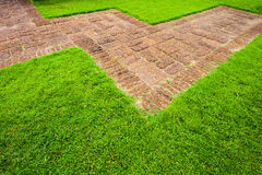 Stone sidewalk and grass. Abstract of footpath with sand stone and grass Stock Photography