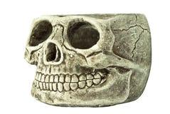 Stone skull Royalty Free Stock Photography