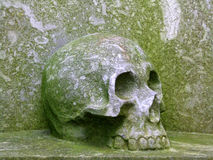 Stone skull Royalty Free Stock Photos