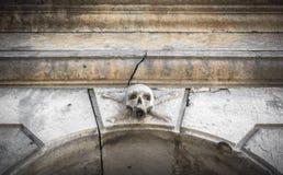 Stone skull Royalty Free Stock Photo