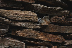 Stone slate wall texture, architecture design with rocks Royalty Free Stock Photography