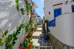 Stone slated alley with limewashed houses Stock Photo