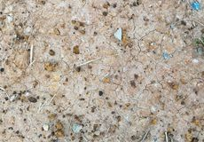 Stone and soil on dry ground Royalty Free Stock Image