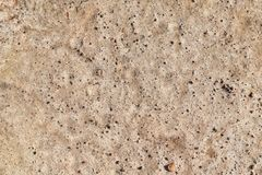 Stone and soil on dry ground Royalty Free Stock Photo