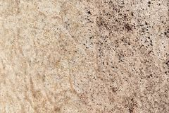 Stone and soil on dry ground Stock Image