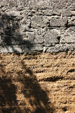 Stone and soil wall background texture Royalty Free Stock Image