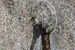Stone spout of fountain Stock Photo