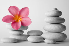 Stone Stack and Frangipani Flower Royalty Free Stock Images