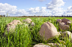 Stone stack pile grass surround agricultural field Stock Photo