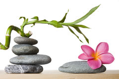 Stone Stack With Spiral Bamboo Stock Images