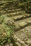 Stone stair Royalty Free Stock Photography