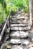 Stone stair at Pha Tam park, Thailand Royalty Free Stock Images