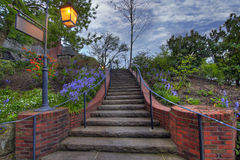 Stone Stair Steps. With Plants and Sky at Dusk Stock Photo