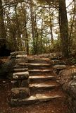 Stone Stair steps in nature forest. A stair case in the woods that leads downward with a railing stock image