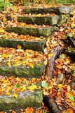 Stone Staircase. Fall foliage along a curved stone staircase Stock Images