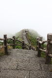 Stone staircase. A stone staircase leading to the wonderland Stock Photo