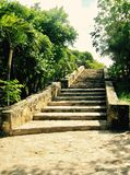 Stone staircase amoungst the trees at Tulum National Park, Mexico stock photos