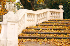 Stone staircase with fallen leaves autumn Royalty Free Stock Photos
