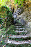 Stone staircase in Gregorian Villa, Tivoli. Italy. Tivoli is a small town situated not far from Rome Stock Photos