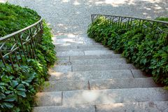 A stone staircase with an iron railing. A stone staircase with an iron railing down from above, a leafy bush curls around the handrails stock photo