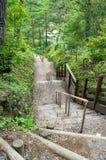 Stone staircase in Kusatsu park Stock Image