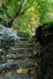 Stone staircase leading on Tembeling pool Stock Photo