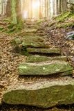 Stone staircase leading up with sunlight Royalty Free Stock Image