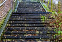 Stone staircase in the middle of nature, outdoor architecture, steps covered in leaves, slippery stairs. A stone staircase in the middle of nature, outdoor stock images