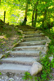 Stone staircase. Old stone staircase leads up Stock Photos