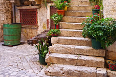 Stone staircase with plants in a medieval city with cobblestone Royalty Free Stock Photos