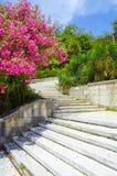 Stone staircase Royalty Free Stock Photos