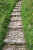 Stone stairs. Grass slate stock image