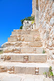 Stone stairs. Of the ancient castle Royalty Free Stock Photography